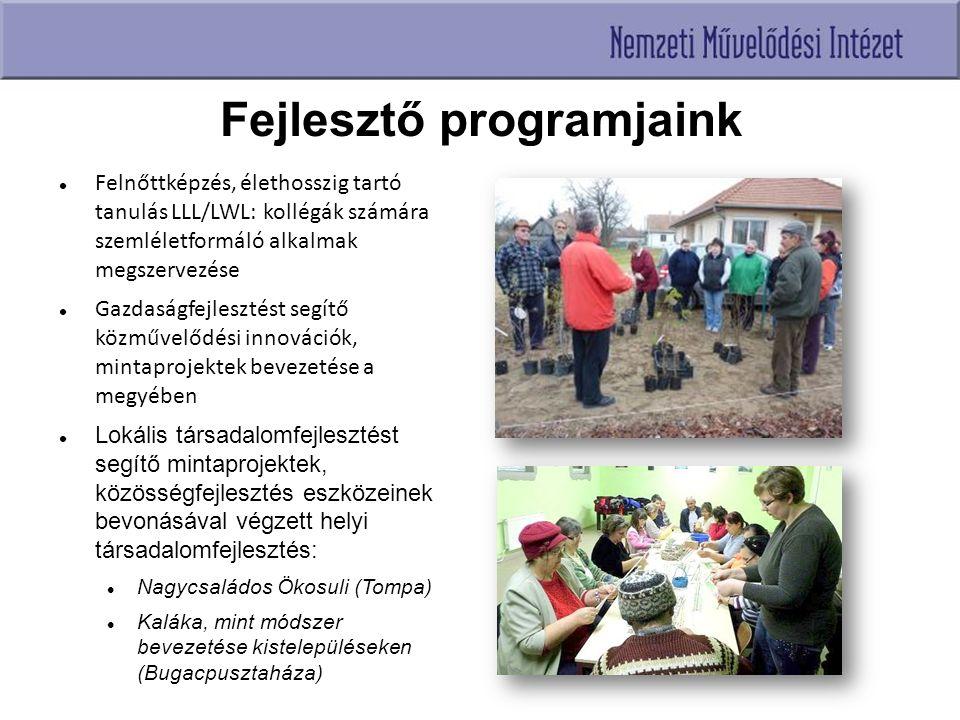 Fejlesztő programjaink Felnőttképzés, élethosszig tartó tanulás LLL/LWL: kollégák számára szemléletformáló alkalmak megszervezése Gazdaságfejlesztést segítő közművelődési innovációk, mintaprojektek bevezetése a megyében Lokális társadalomfejlesztést segítő mintaprojektek, közösségfejlesztés eszközeinek bevonásával végzett helyi társadalomfejlesztés: Nagycsaládos Ökosuli (Tompa) Kaláka, mint módszer bevezetése kistelepüléseken (Bugacpusztaháza)