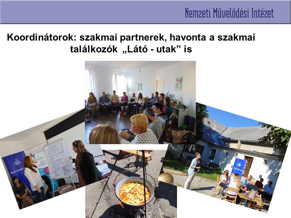 """Koordinátorok: szakmai partnerek, havonta a szakmai találkozók """"Látó - utak is"""