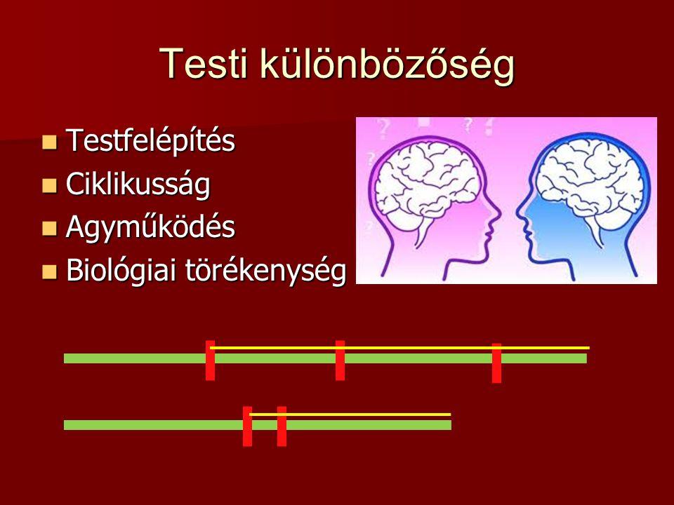 Testi különbözőség Testfelépítés Testfelépítés Ciklikusság Ciklikusság Agyműködés Agyműködés Biológiai törékenység Biológiai törékenység