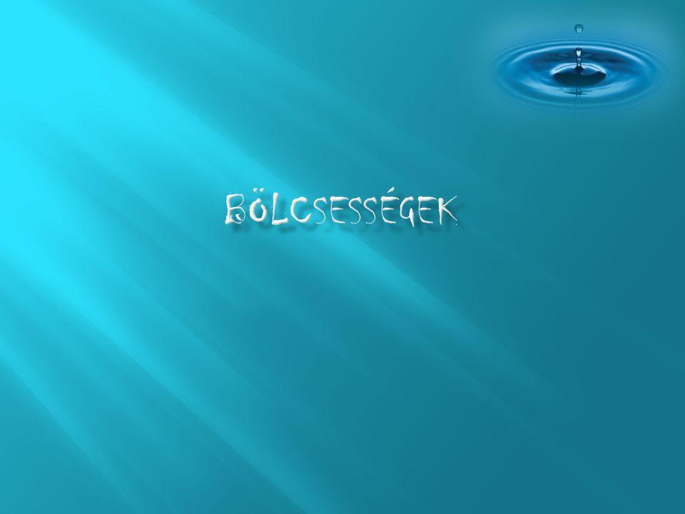 A víz alatt, a víz alatt a létezés csodás: van élelem b ő ségesen, s nincs vízkorlátozás.