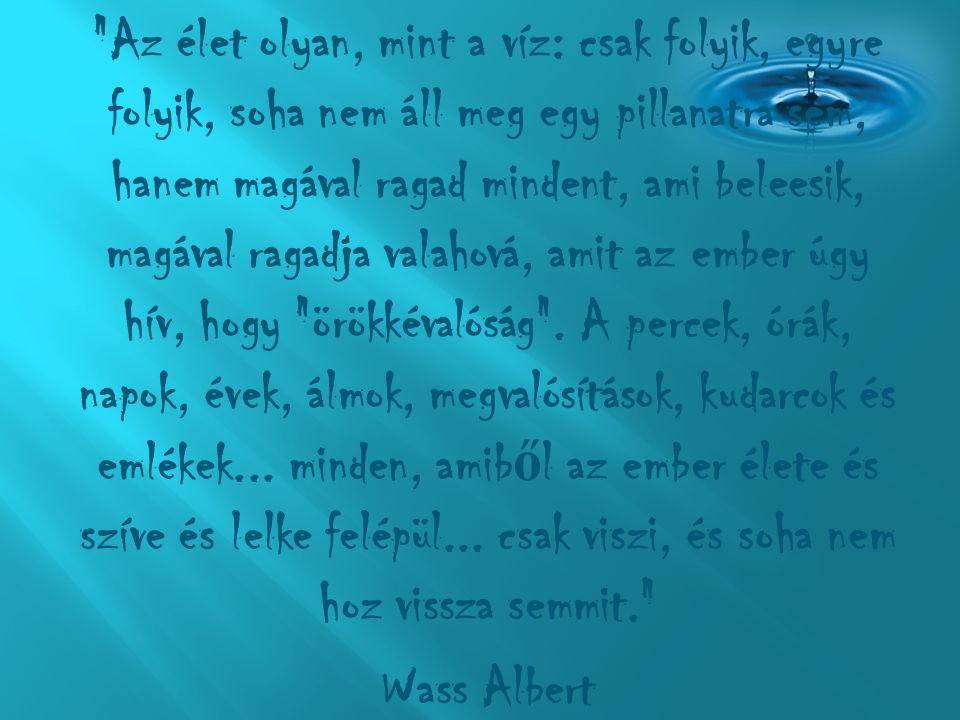 """""""Attól még nem fulladsz meg, ha egyszer ű en vízbe ugrasz; csak akkor fulladsz meg, ha nem jössz a felszínre. Paulo Coelho"""
