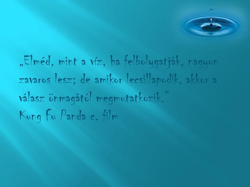 """""""Elméd, mint a víz, ha felbolygatják, nagyon zavaros lesz; de amikor lecsillapodik, akkor a válasz önmagától megmutatkozik. Kung Fu Panda c."""