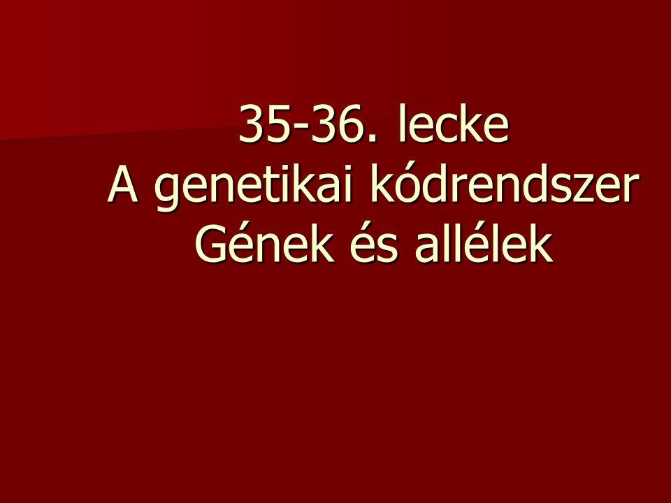 35-36. lecke A genetikai kódrendszer Gének és allélek
