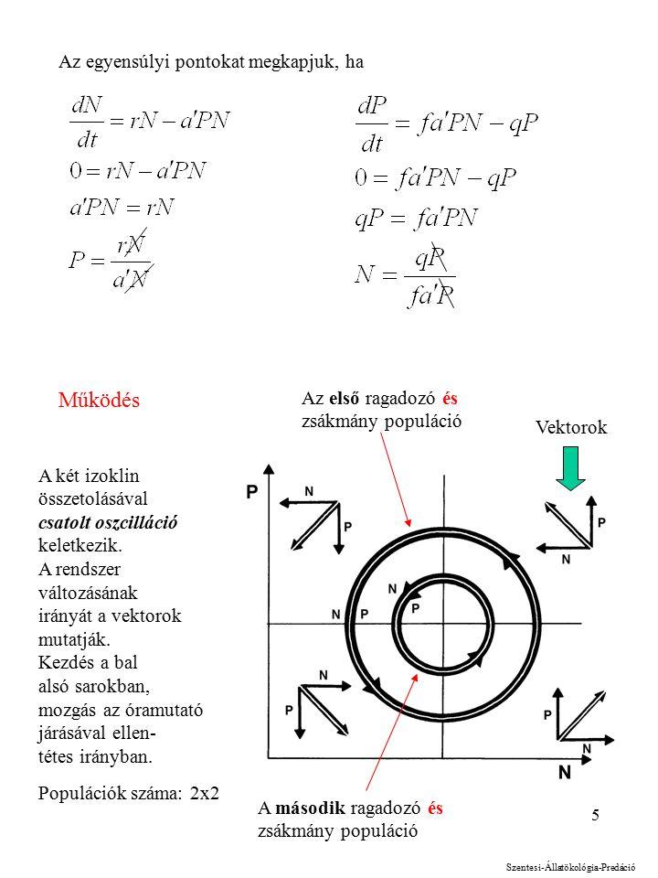 5 Az egyensúlyi pontokat megkapjuk, ha Működés A két izoklin összetolásával csatolt oszcilláció keletkezik.
