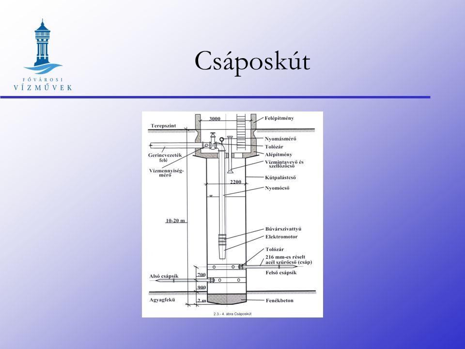 Csáposkút 1948-ban épült az első ( 5 m átmérőjű vasbeton aknás ) 15 év alatt 25 db épül meg Acélköpenyes 2,2 m átmérőjű csápos kutak (az első kísérlet