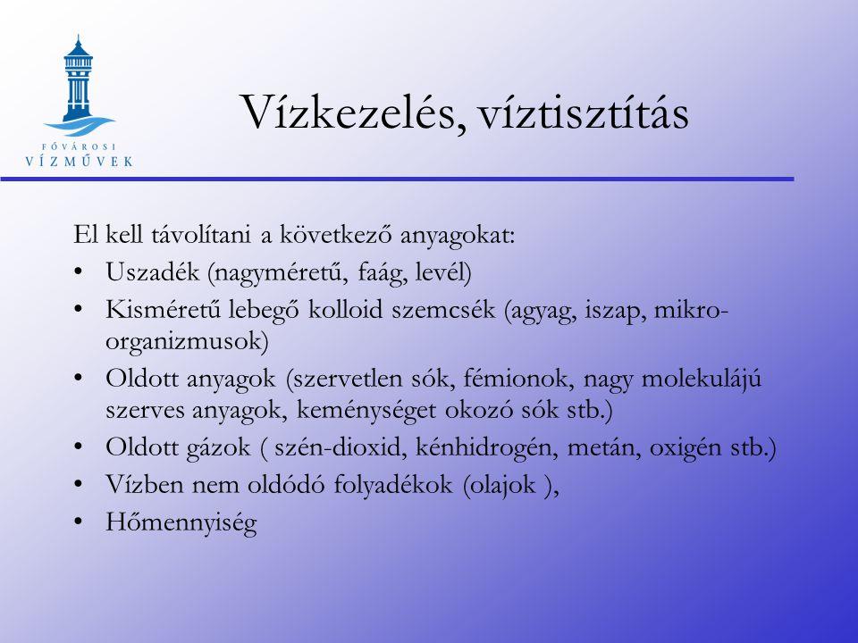 EÜIR FER DÜIR Monostor Balpart Surány Tahi Tótfalu Kisoroszi Horány Szigeti Pocsmégyer Radnóti u.