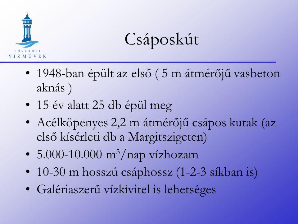 Csáposkút 1948-ban épült az első ( 5 m átmérőjű vasbeton aknás ) 15 év alatt 25 db épül meg Acélköpenyes 2,2 m átmérőjű csápos kutak (az első kísérleti db a Margitszigeten) 5.000-10.000 m 3 /nap vízhozam 10-30 m hosszú csáphossz (1-2-3 síkban is) Galériaszerű vízkivitel is lehetséges