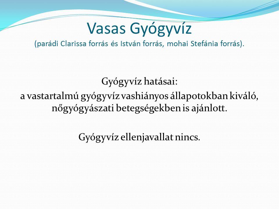 Vasas Gyógyvíz (parádi Clarissa forrás és István forrás, mohai Stefánia forrás). Gyógyvíz hatásai: a vastartalmú gyógyvíz vashiányos állapotokban kivá