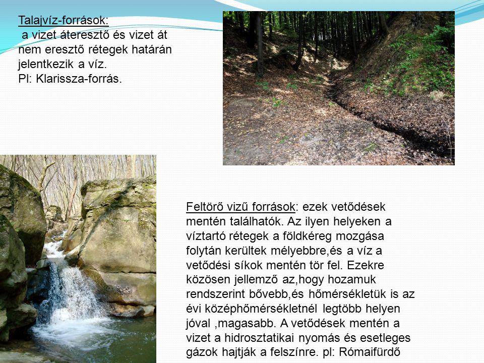 Talajvíz-források: a vizet áteresztő és vizet át nem eresztő rétegek határán jelentkezik a víz. Pl: Klarissza-forrás. Feltörő vizű források: ezek vető