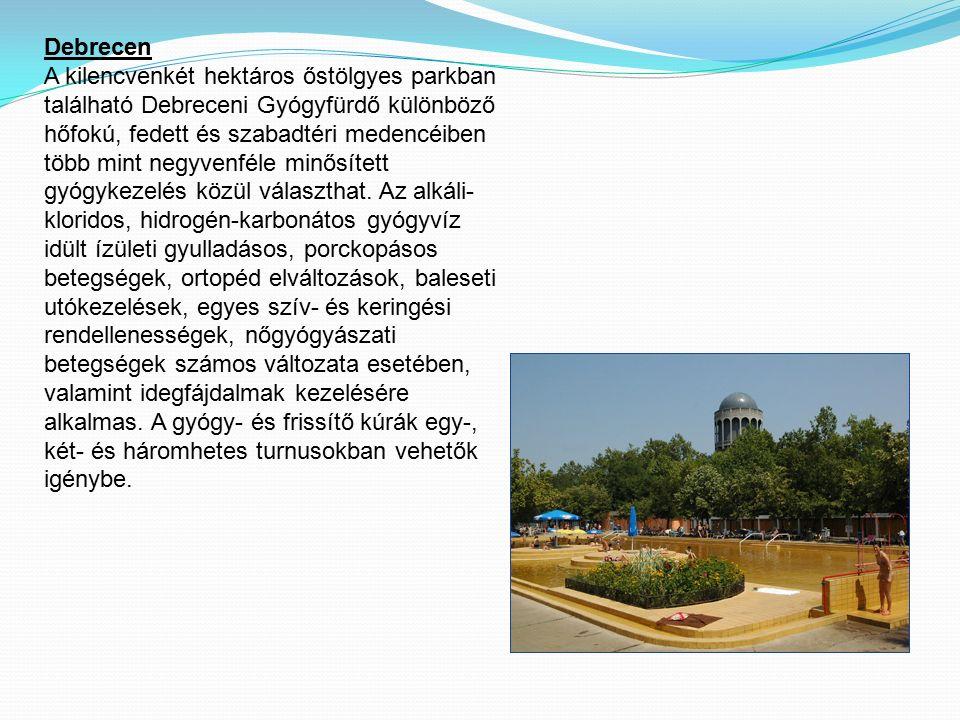 Debrecen A kilencvenkét hektáros őstölgyes parkban található Debreceni Gyógyfürdő különböző hőfokú, fedett és szabadtéri medencéiben több mint negyven