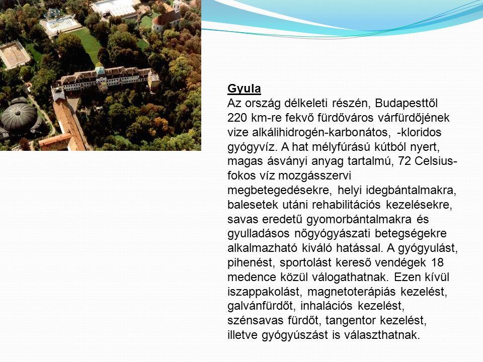 Gyula Az ország délkeleti részén, Budapesttől 220 km-re fekvő fürdőváros várfürdőjének vize alkálihidrogén-karbonátos, -kloridos gyógyvíz. A hat mélyf