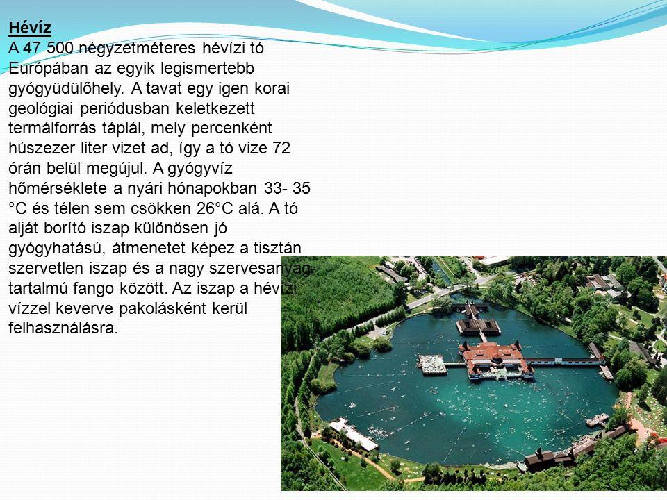 Hévíz A 47 500 négyzetméteres hévízi tó Európában az egyik legismertebb gyógyüdülőhely. A tavat egy igen korai geológiai periódusban keletkezett termá