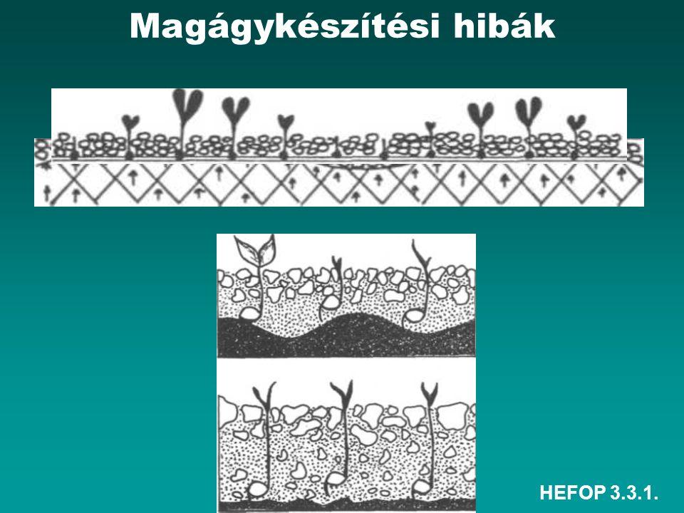 HEFOP 3.3.1. Magágykészítési hibák