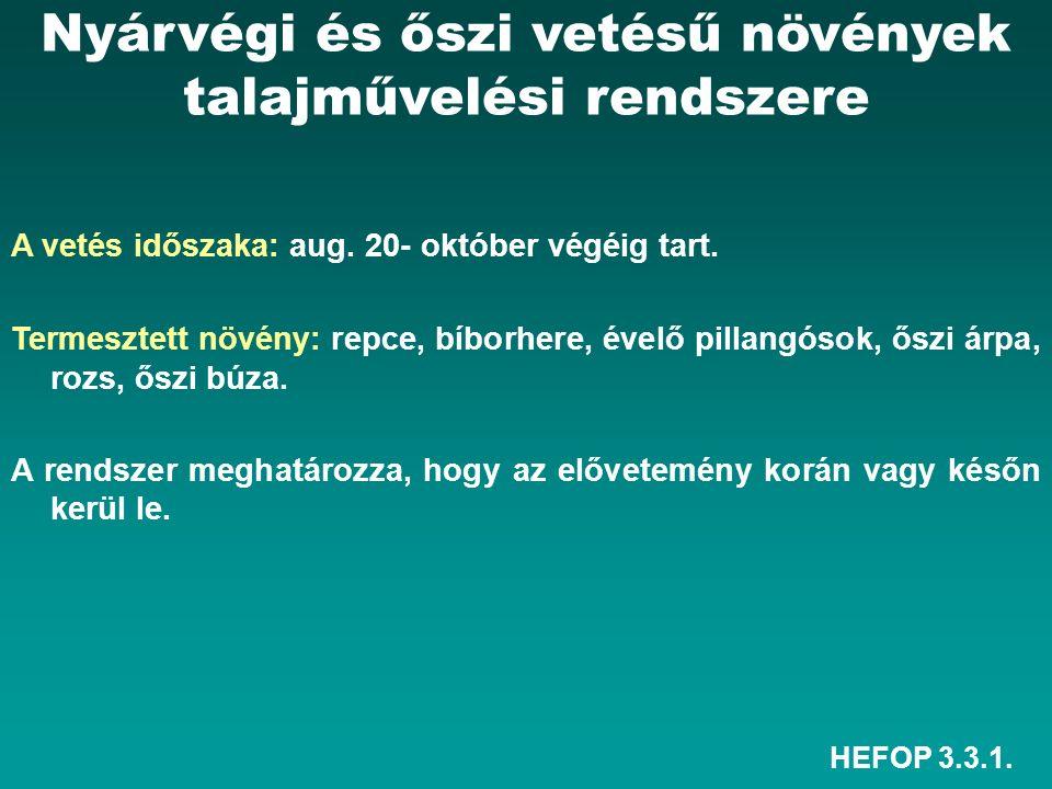 HEFOP 3.3.1. A vetés időszaka: aug. 20- október végéig tart.