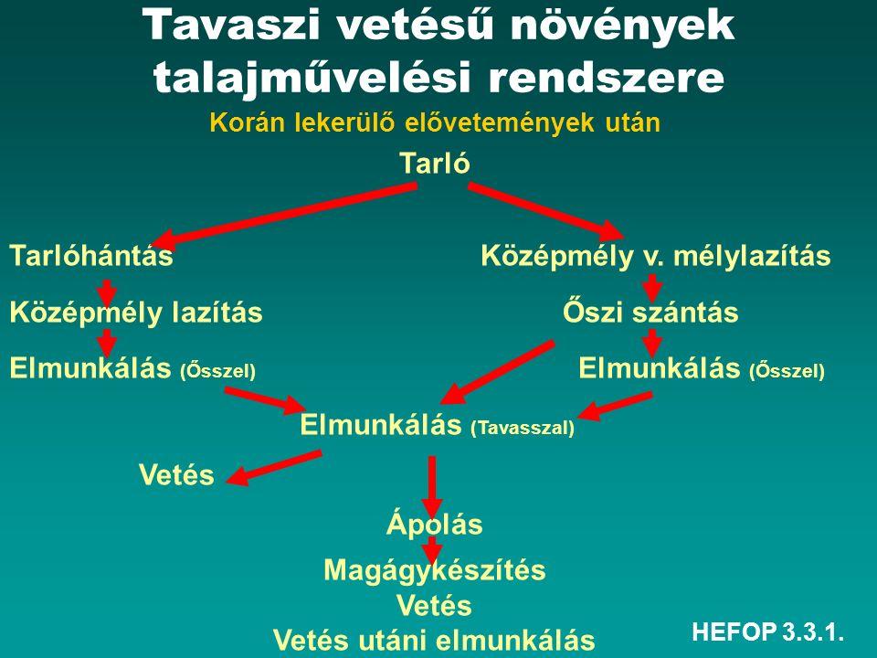 HEFOP 3.3.1. Korán lekerülő elővetemények után Tarló Tarlóhántás Középmély v.
