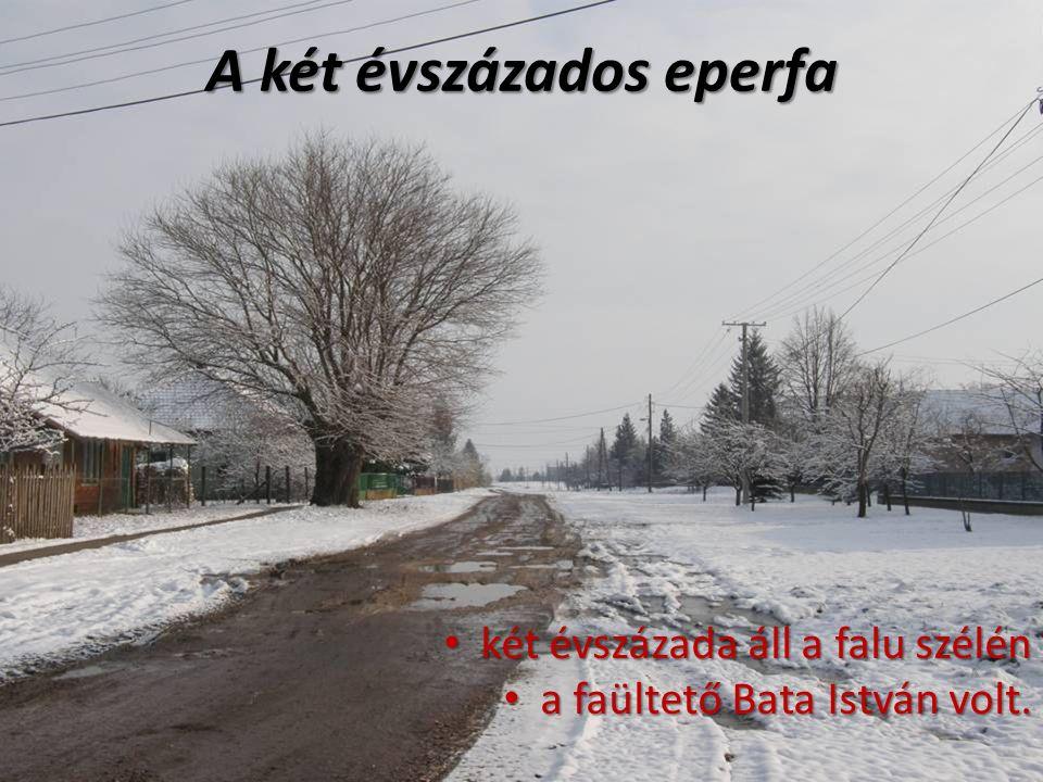 két évszázada áll a falu szélén két évszázada áll a falu szélén a faültető Bata István volt.