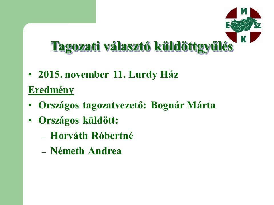 Tagozati választó küldöttgyűlés 2015. november 11.