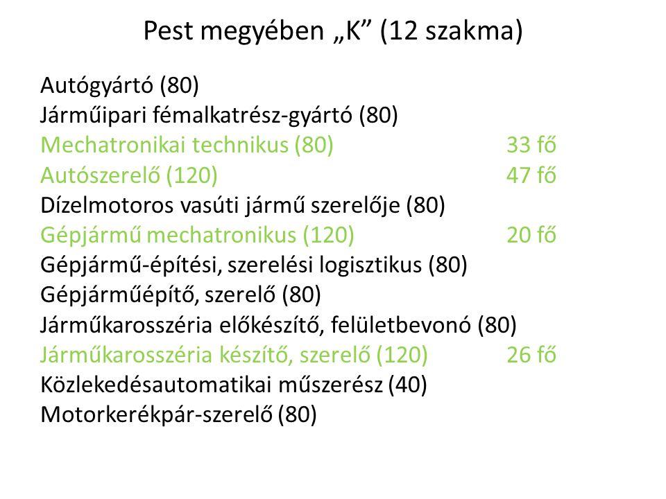 """Pest megyében """"K"""" (12 szakma) Autógyártó (80) Járműipari fémalkatrész-gyártó (80) Mechatronikai technikus (80)33 fő Autószerelő (120)47 fő Dízelmotoro"""