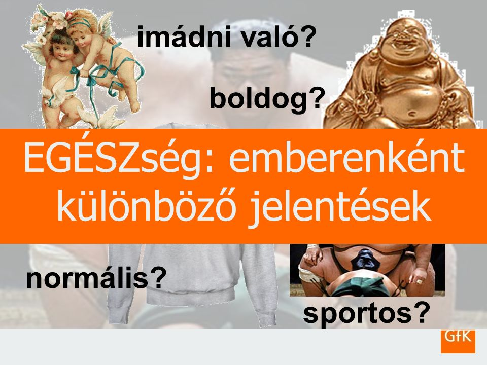 6 GfK HealthCareDr. Lantos Zoltán – Egészségfogyasztók viselkedése2010.