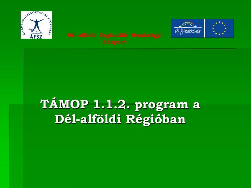 TÁMOP 1.1.2. program a Dél-alföldi Régióban Dél-alföldi Regionális Munkaügyi Központ