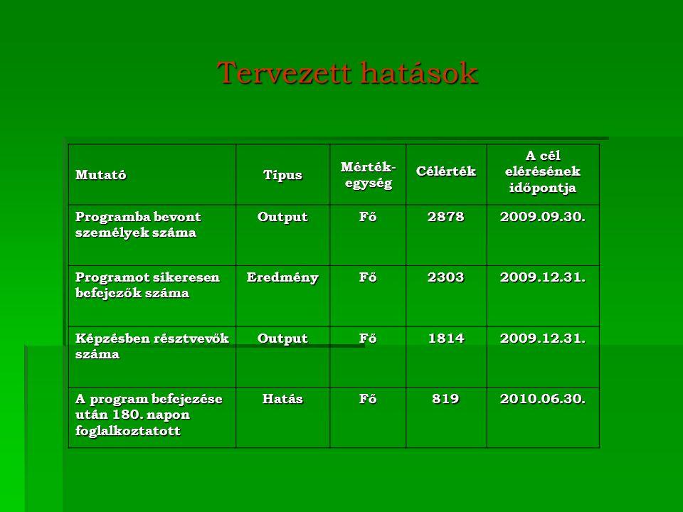 Tervezett hatások MutatóTípus Mérték- egység Célérték A cél elérésének időpontja Programba bevont személyek száma OutputFő28782009.09.30.