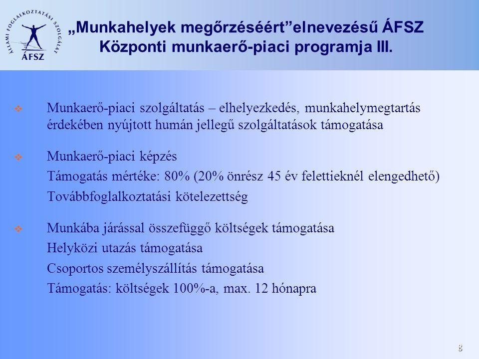 """8 """"Munkahelyek megőrzéséért elnevezésű ÁFSZ Központi munkaerő-piaci programja III."""