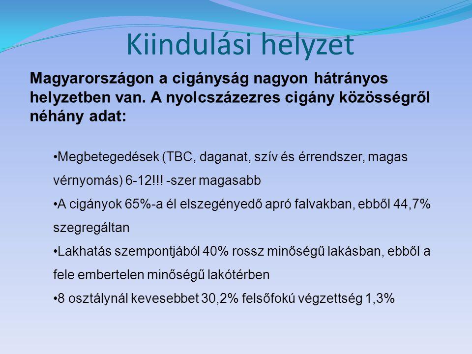 Kiindulási helyzet Magyarországon a cigányság nagyon hátrányos helyzetben van. A nyolcszázezres cigány közösségről néhány adat: Megbetegedések (TBC, d