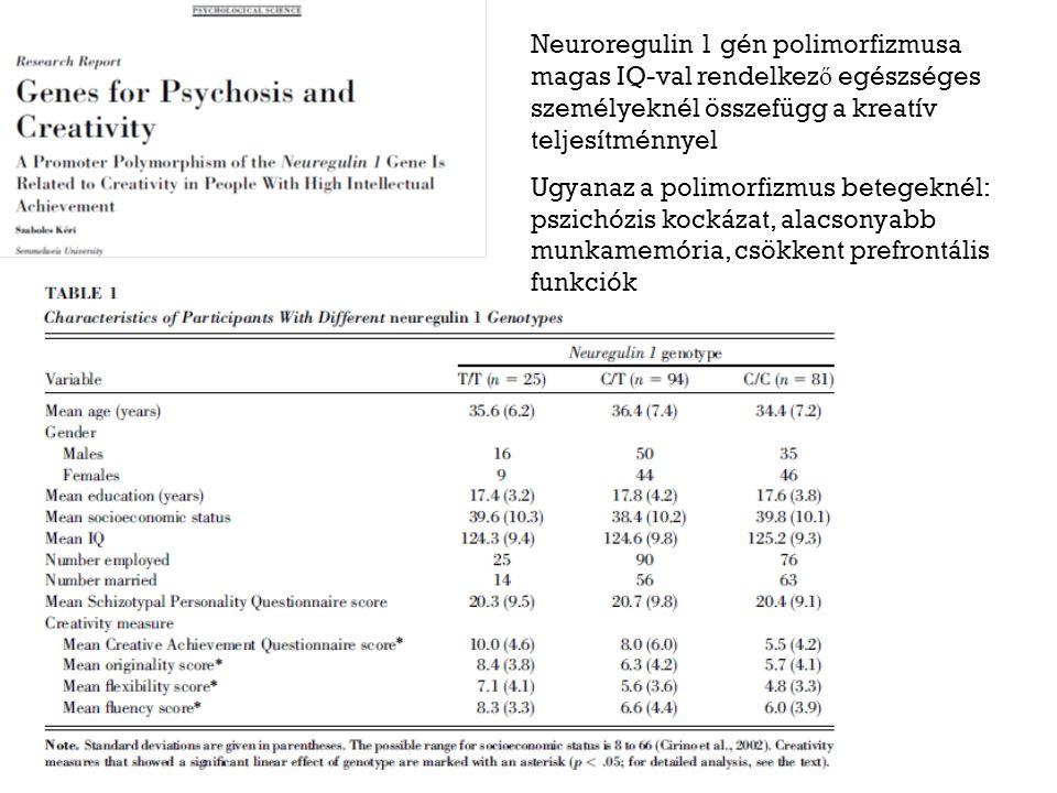 Neuroregulin 1 gén polimorfizmusa magas IQ-val rendelkez ő egészséges személyeknél összefügg a kreatív teljesítménnyel Ugyanaz a polimorfizmus betegeknél: pszichózis kockázat, alacsonyabb munkamemória, csökkent prefrontális funkciók