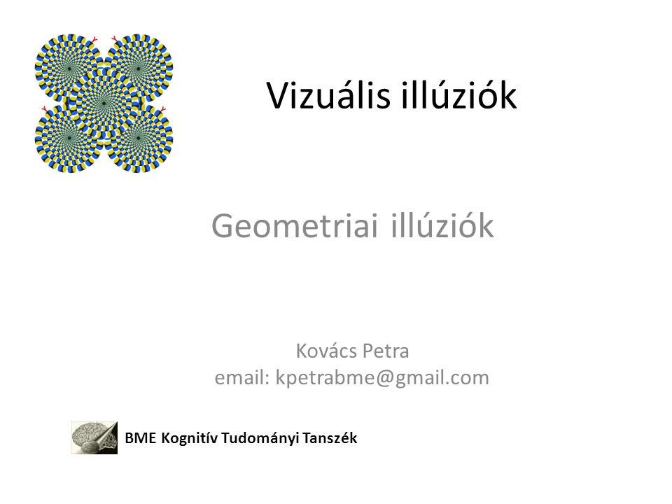 Vizuális illúziók Geometriai illúziók Kovács Petra email: kpetrabme@gmail.com BME Kognitív Tudományi Tanszék