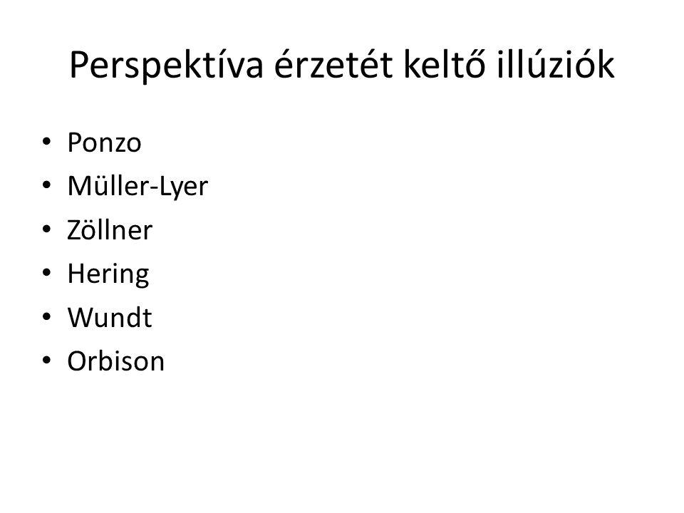 Perspektíva érzetét keltő illúziók Ponzo Müller-Lyer Zöllner Hering Wundt Orbison