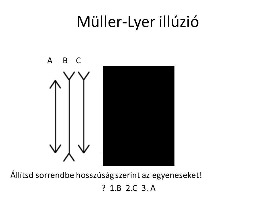 A B C Állítsd sorrendbe hosszúság szerint az egyeneseket! 1.B 2.C 3. A