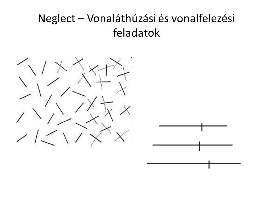 Neglect – Vonaláthúzási és vonalfelezési feladatok