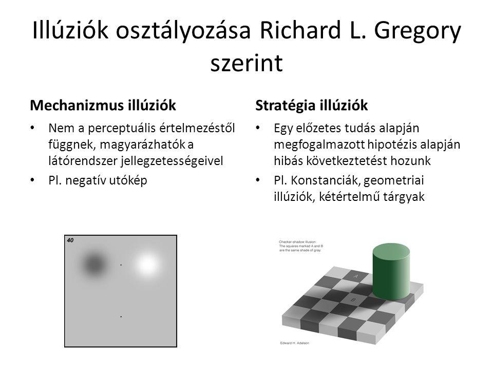 Illúziók osztályozása Richard L.