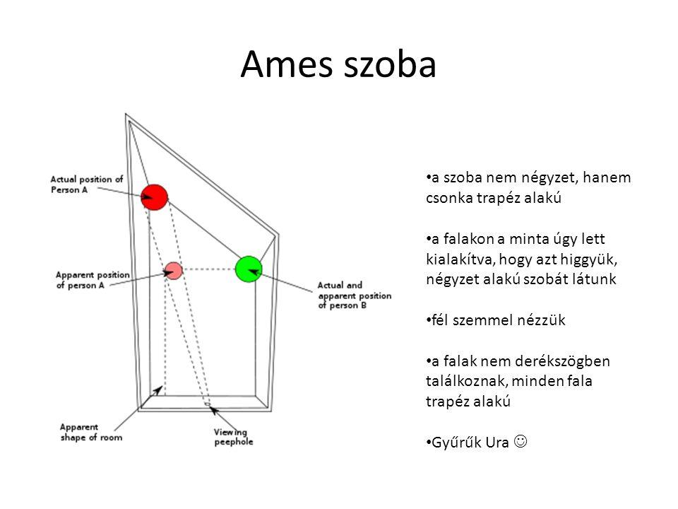 Ames szoba a szoba nem négyzet, hanem csonka trapéz alakú a falakon a minta úgy lett kialakítva, hogy azt higgyük, négyzet alakú szobát látunk fél sze
