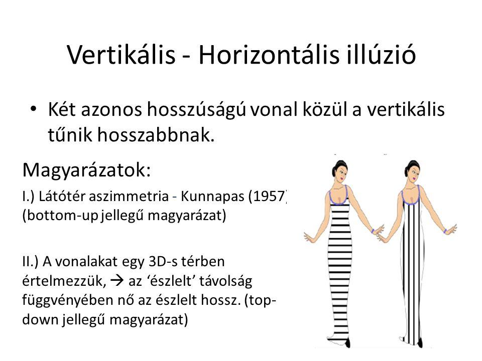 Vertikális - Horizontális illúzió Két azonos hosszúságú vonal közül a vertikális tűnik hosszabbnak.