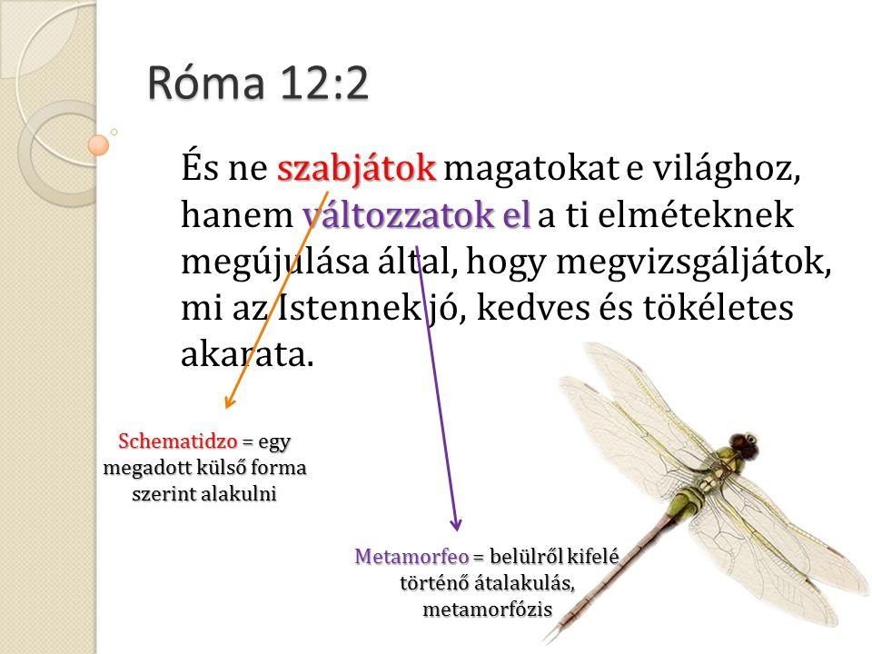 Róma 12:2 szabjátok változzatok el És ne szabjátok magatokat e világhoz, hanem változzatok el a ti elméteknek megújulása által, hogy megvizsgáljátok, mi az Istennek jó, kedves és tökéletes akarata.