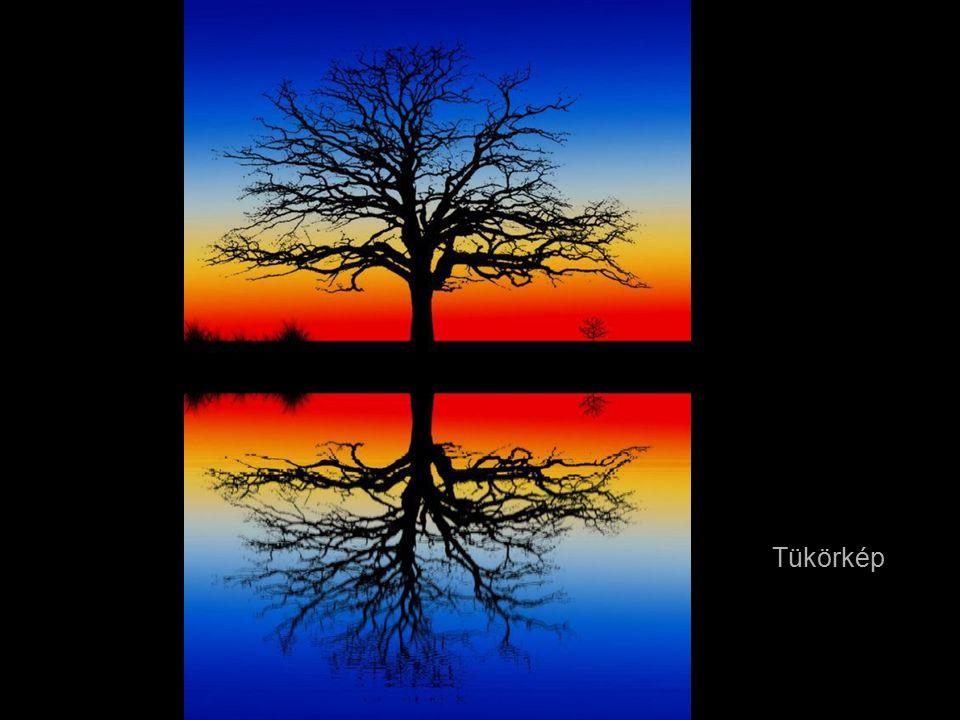 A gyönyörű Burma