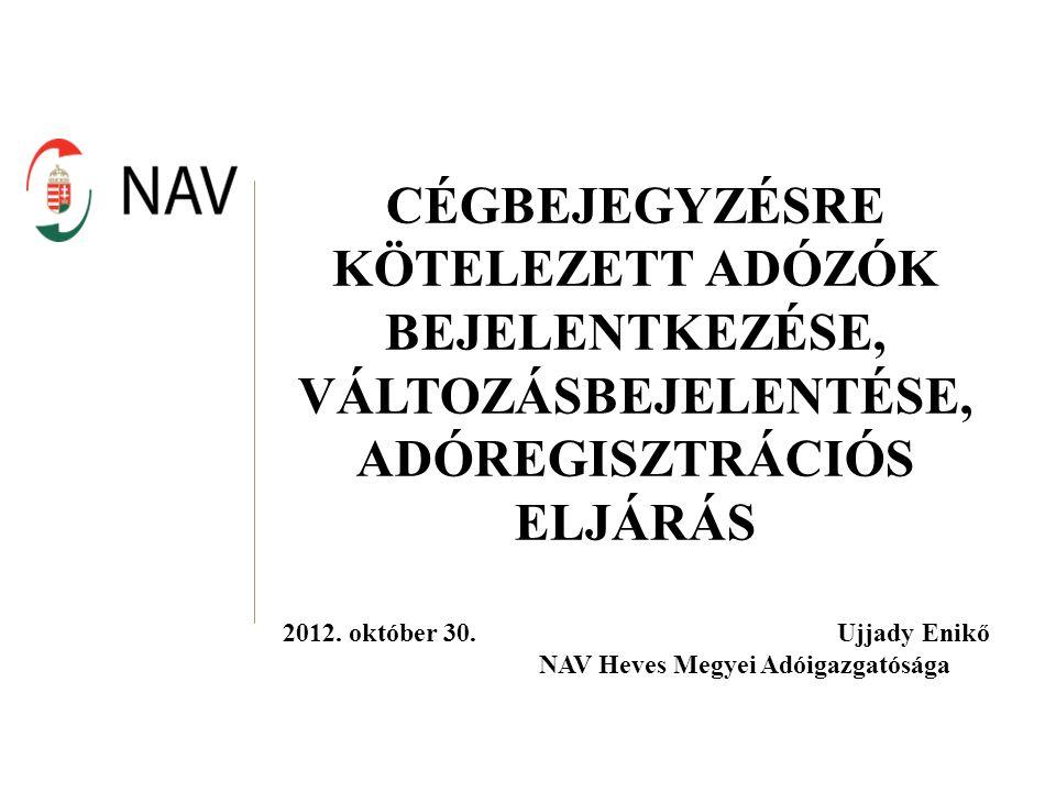 Cégbejegyzésre kötelezett adózók: cégbejegyzéshez kötött jogi személy jogi személyiséggel nem rendelkező gazdasági társaság cégbejegyzésre kötelezett egyéb szervezet egyéni cég (2010-től)