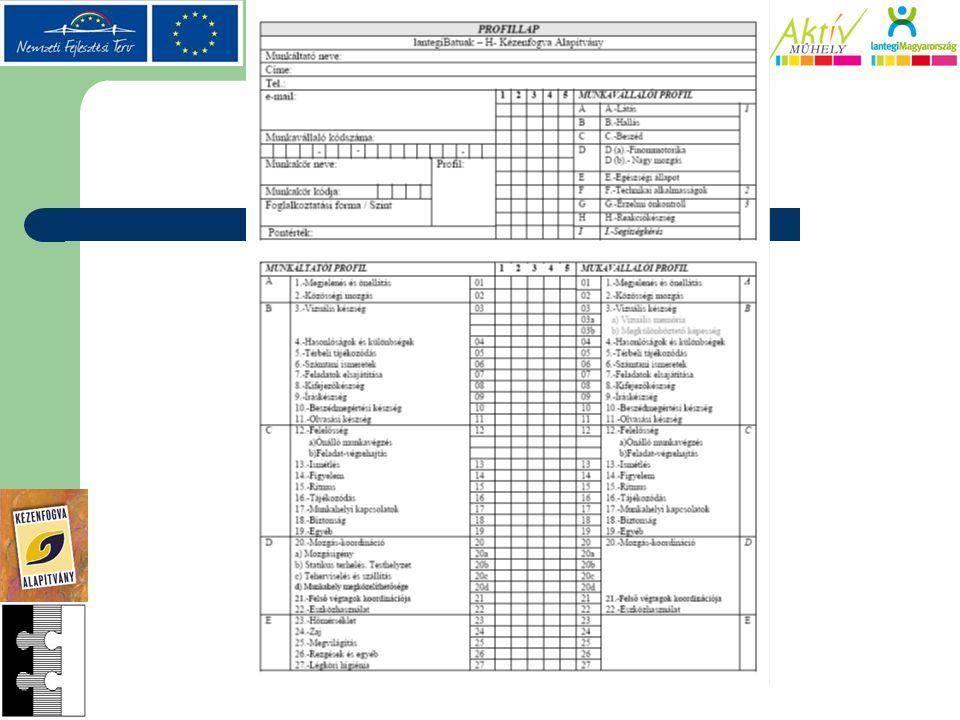 A munkahelyhez kötött munkakör felmérése (munkáltatói profil) 4 pont: Egyszerű, alapvető műveletek végrehajtása, pl.: összeadás/kivonás törtekkel.