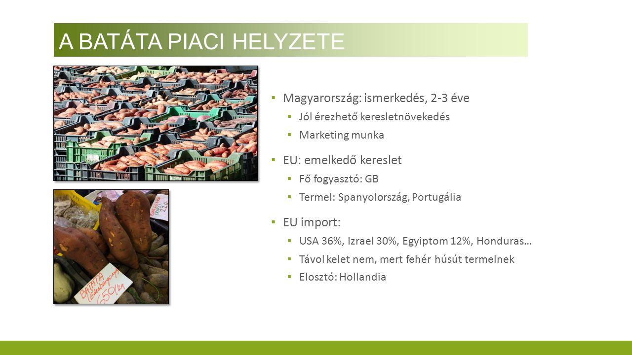 A BATÁTA PIACI HELYZETE ▪ Magyarország: ismerkedés, 2-3 éve ▪ Jól érezhető keresletnövekedés ▪ Marketing munka ▪ EU: emelkedő kereslet ▪ Fő fogyasztó: