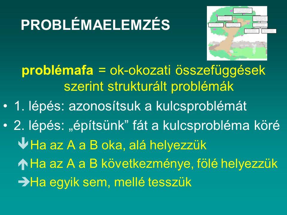 """problémafa = ok-okozati összefüggések szerint strukturált problémák 1. lépés: azonosítsuk a kulcsproblémát 2. lépés: """"építsünk"""" fát a kulcsprobléma kö"""