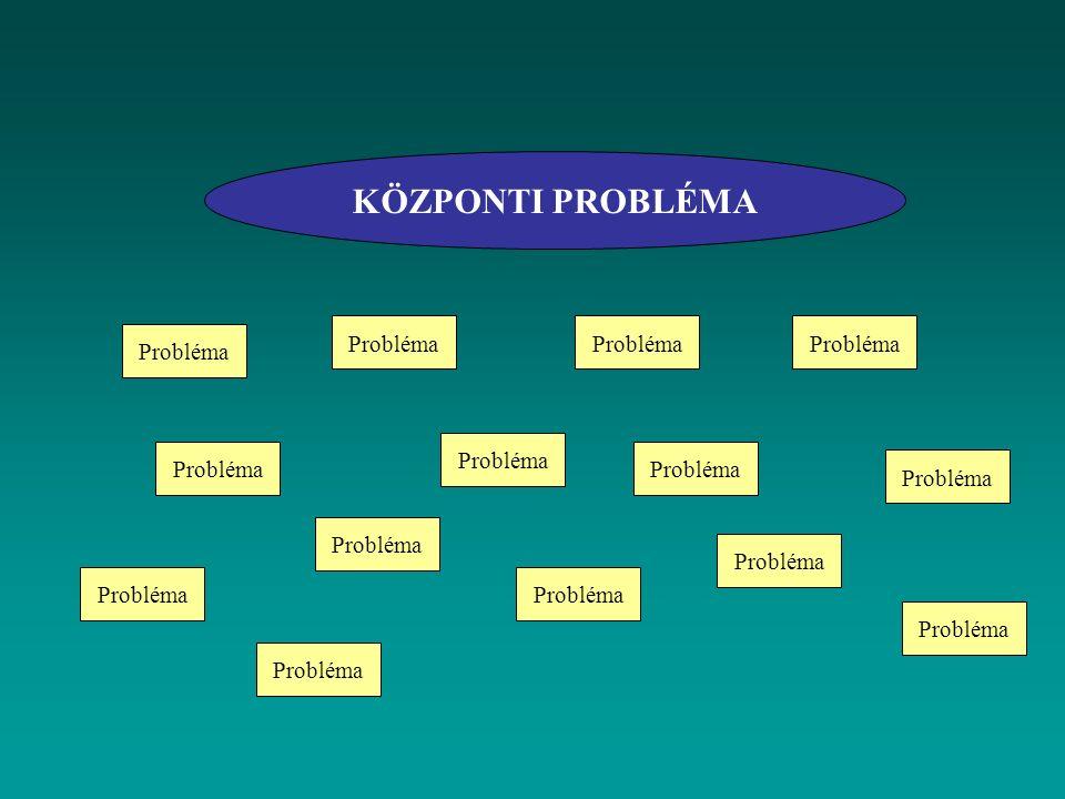 KÖZPONTI PROBLÉMA Probléma