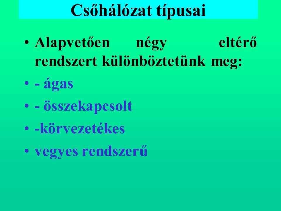 Csőhálózat típusai Alapvetően négy eltérő rendszert különböztetünk meg: - ágas - összekapcsolt -körvezetékes vegyes rendszerű