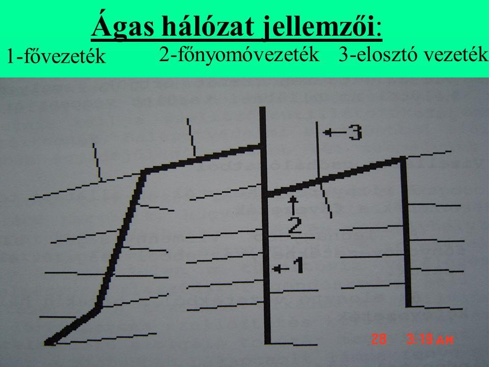 Ágas hálózat jellemzői: 1-fővezeték 2-főnyomóvezeték3-elosztó vezeték