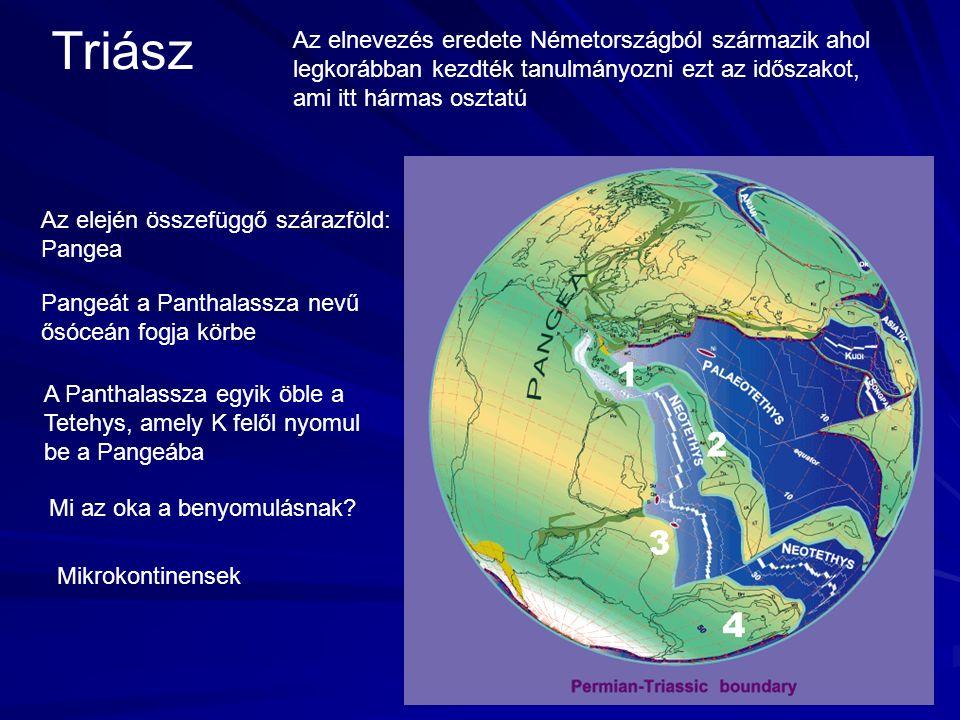 Triász Az elnevezés eredete Németországból származik ahol legkorábban kezdték tanulmányozni ezt az időszakot, ami itt hármas osztatú Az elején összefüggő szárazföld: Pangea Pangeát a Panthalassza nevű ősóceán fogja körbe A Panthalassza egyik öble a Tetehys, amely K felől nyomul be a Pangeába Mi az oka a benyomulásnak.