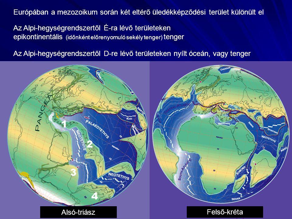 """Germán triász (Németország, Franciaország, Lengyelország) Alpi triász (a mai Alpi-hegységrendszer öve) Alsó-triász: """"buntsandstein v."""
