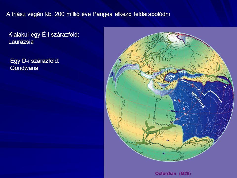 Jura Az elnevezés a Jura-hegységből ered A jura legjellemzőbb mozzanata, hogy az egész Földön előrenyomul a tenger Y alakú hasadékrendszer
