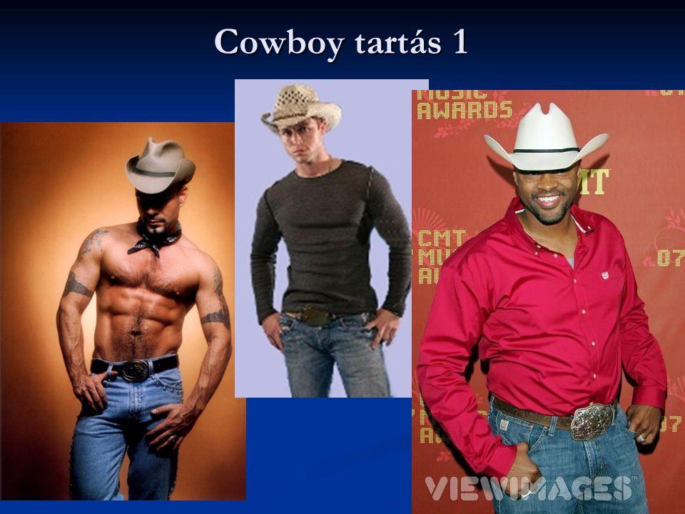 Cowboy tartás 1