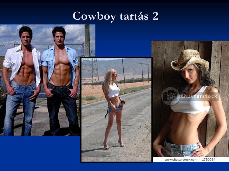 Cowboy tartás 2