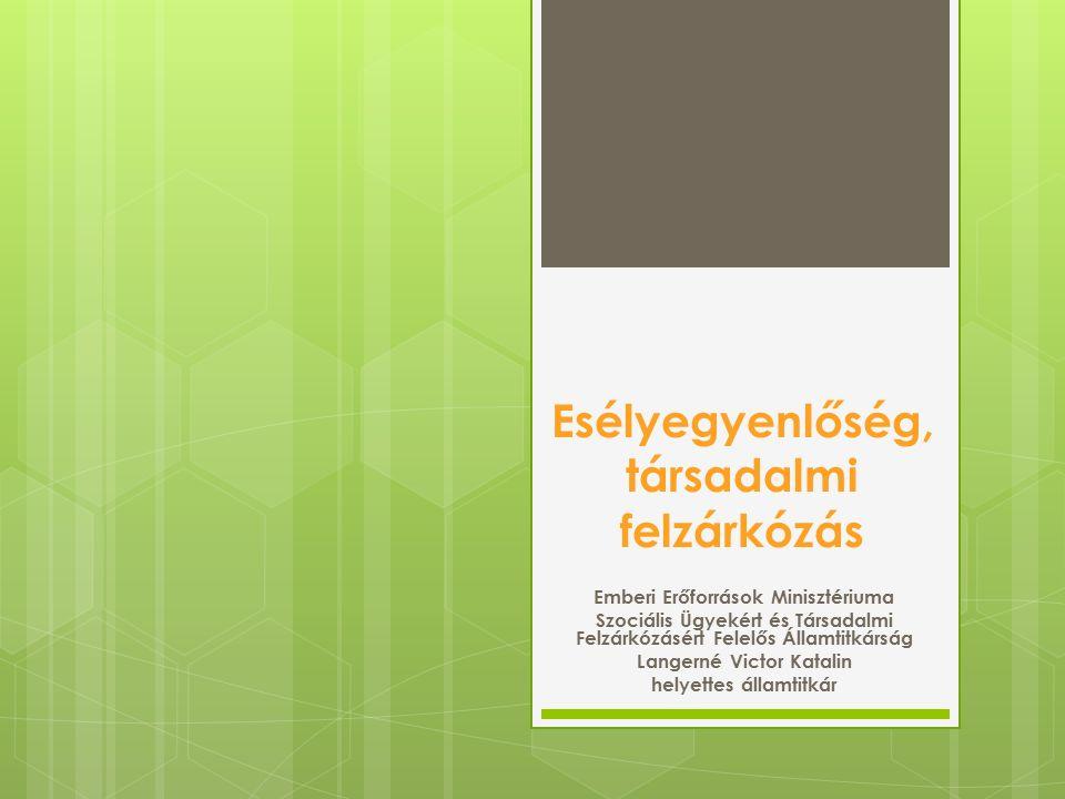 Esélyegyenlőség, társadalmi felzárkózás Emberi Erőforrások Minisztériuma Szociális Ügyekért és Társadalmi Felzárkózásért Felelős Államtitkárság Langer